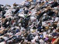 İslamabad çöplüğünde plastik yiyen mantar keşfedildi