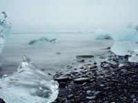 İklim değişikliği gezegendeki en önemli yaşamsal tehdit