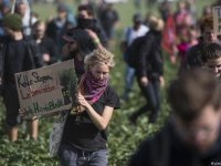 Hambach'taki çevrecilere operasyon sürüyor