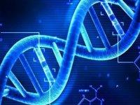 DNA'nız yaşam sürenizi belirliyor