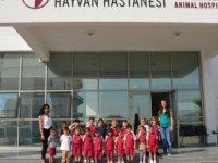 Yakın Doğu Okul Öncesi Öğrencilerinin Hayvanları Koruma Günü Gezisi…