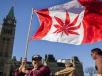 Kanada keyif amaçlı esrar kullanımı ve satışını yasallaştıran ikinci ülke oldu