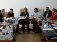 Hukuk Siyasi İşler ve Dışilişkiler Komitesi toplandı