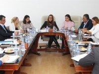Mecliste komite çalışmaları…