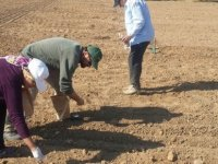 Bilinçsiz tarım verimi düşürüyor