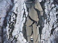 Alaska'da 7 büyüklüğündeki deprem anı böyle görüntülendi