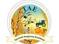 """Tarım Bakanlığı """"Mantar Yetiştiriciliği"""" eğitimi düzenliyor"""
