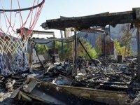 Yangında öldüğü zannedilen kedi, yıkıntıların arasında bulundu: Başardın (video)