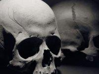 New Yorkta 50 yıl önce kaybolan babasının kemiklerini evinde buldu