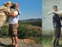 İtalyan gazeteciler Sivas'ta: Kurtlar İtalya'yı ele geçirdi, çare kangallar