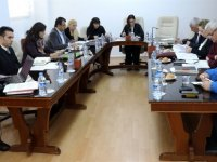 Meclis Komitesi'nde hayvan işletmeleri ve hayvan refahına ilişkin yasal düzenlemeler görüşüldü