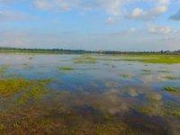 Mehmetçik gölü yıllar sonra doldu (Foto haber)