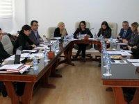 Meclis siyasi işler ve dışilişkiler komitesi iki tasarıyı görüştü