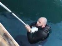 Girne'de; denize düşen kediyi,suya atlayıp kurtardı (video)
