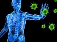 Bağışıklık Sistemini Korumanın Yolu Yeterli Ve Dengeli Beslenmeden Geçiyor