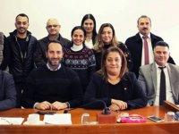 AB Uyum Yasa Tasarıları için Geçici Ve Özel Komite toplandı