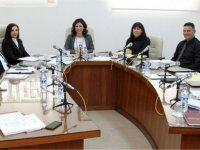 3 Ombudsman Raporu onaylandı, 2 dilekçe de karara bağladı.