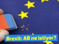 Brexit: Avrupa ne istiyor?
