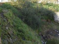 Kültürel Miras Teknik Komitesi Lefkoşa surları'nda çalışma başlattı