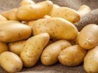 TÜK sofralık patatesin satış fiyatını 3.75 TL/KİLO'ya düşürdü