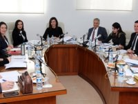 Komite gündeminde bulunan, üç Ombudsman raporunu görüşüp bir tanesini onayladı