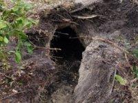 FBI açıkladı:Banka soygunu için 50 metre tünel kazmışlar (foto haber)