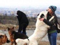 Çocuklara hayvan sevgisi aşılamanın 5 yolu
