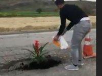 Karpaz yolundaki çukura çiçek ekti! ''Umarım dikkat çekmiştir'' (video)