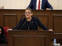 """""""Uluslararası toplumun Kıbrıs'a gönderdiği katkıların Rumlar tarafından kullanılması sorgulanmalı"""""""