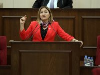 Öztürk, devletin daha hızlı adım atması gerektiğini kaydetti