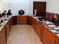 Esnaf ve Zanaatkarlar Odası yasa tasarısı komitede görüşülmeye devam ediyor
