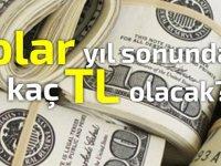 Dolar yıl sonunda kaç TL olacak ?