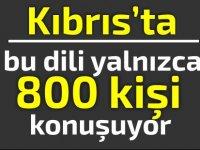 Kıbrıs'ta bu dili yalnızca 800 kişi konuşuyor