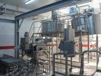 Süt üreticileri süt ürünleri fabrikası kurdu