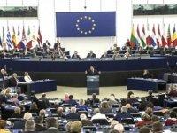 'Yasemin Hareketi' 6 kişilik bir listeyle Avrupa Parlamentosu seçimlerine katılmaya karar verdi