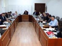 Cumhuriyet Meclisi, hukuk, siyasi işler ve dışilişkiler komitesi bugün toplandı