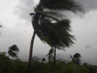 Tropikal fırtına felaketi: 126 kişi öldü