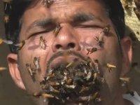 Arılara fısıldayan adam: Peteklere kafasını sokup, arıları ağzına alıyor (Video)