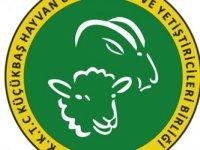 Hayvan Üreticileri ve Yetiştiricileri Birliği'ne yeni Başkan adayı