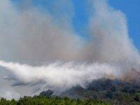 Mangal keyfi pahalıya patladı: 'Mangal yaparken orman yakan' iki öğrenciye 13 milyon euro ceza