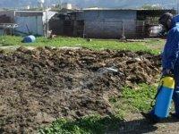 Girne Belediyesi sinek ve haşereyle mücadeleyi biyolojik ilaçlamayla sürdürüyor