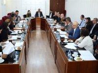"""Bütçe Komitesi """"Kamu Mali Yönetimi ve Kontrol Yasa Tasarısı""""nı görüşüyor"""