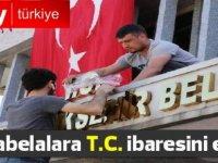 İstanbul Büyükşehir Belediyesi tabelalara 'T.C.' ifadesi ekledi