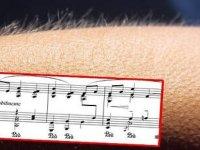 Müzik Dinlerken Tüyleriniz Diken Diken Oluyorsa, Özel Bir Beyne Sahip Olabilirsiniz