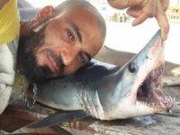 Gazimağusa sahilinde köpekbalığı