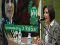 Siber : 5 yıl daha büyük yıkım ve göç olur