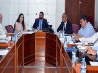 Bütçe Komitesi, Kamu Mali Yönetimi ve Kontrol Yasa Tasarısı'nın genelini görüştü
