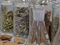 Bitki çaylarında korkutan laboratuvar sonuçları: Kaş, böcek, kirpik