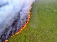 Amazon yangınları: Brezilya lideri Bolsonaro 'yaptırım' çağrıları sonrası orduyu devreye sokuyor