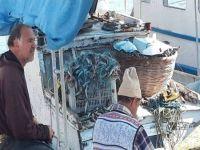 İskele Balıkçılarının yüzü güldü